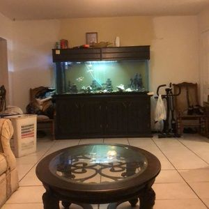 250 GALLON FISH TANK